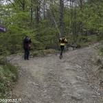 Abbots Way (126) Bardi