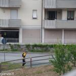 Abbots Way (207) Borgotaro