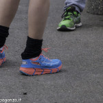 Abbots Way (239) Borgotaro