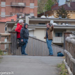 Abbots Way (245) Borgotaro