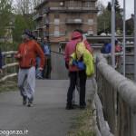 Abbots Way (263) Borgotaro