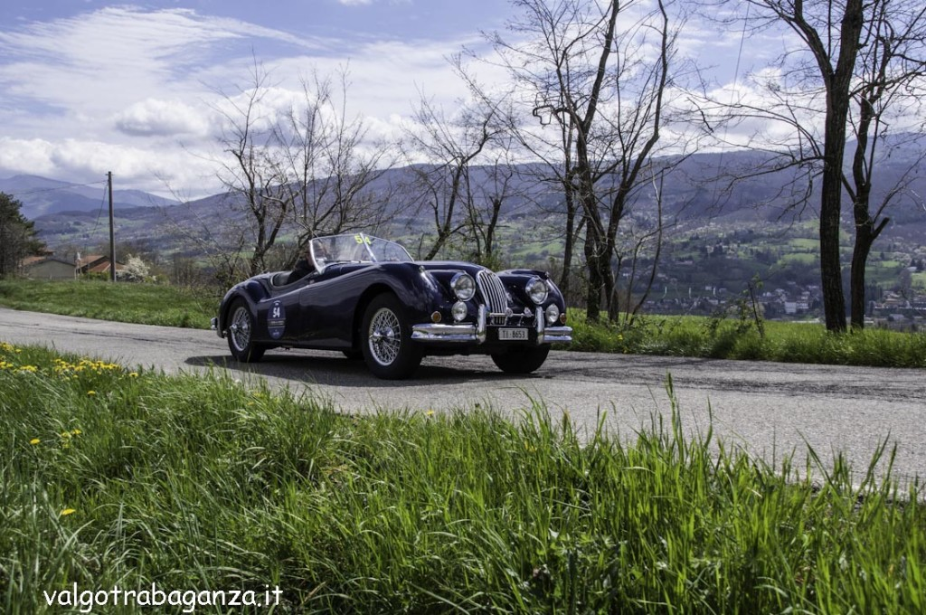 Auto Epoca (408) GP Terre Canossa