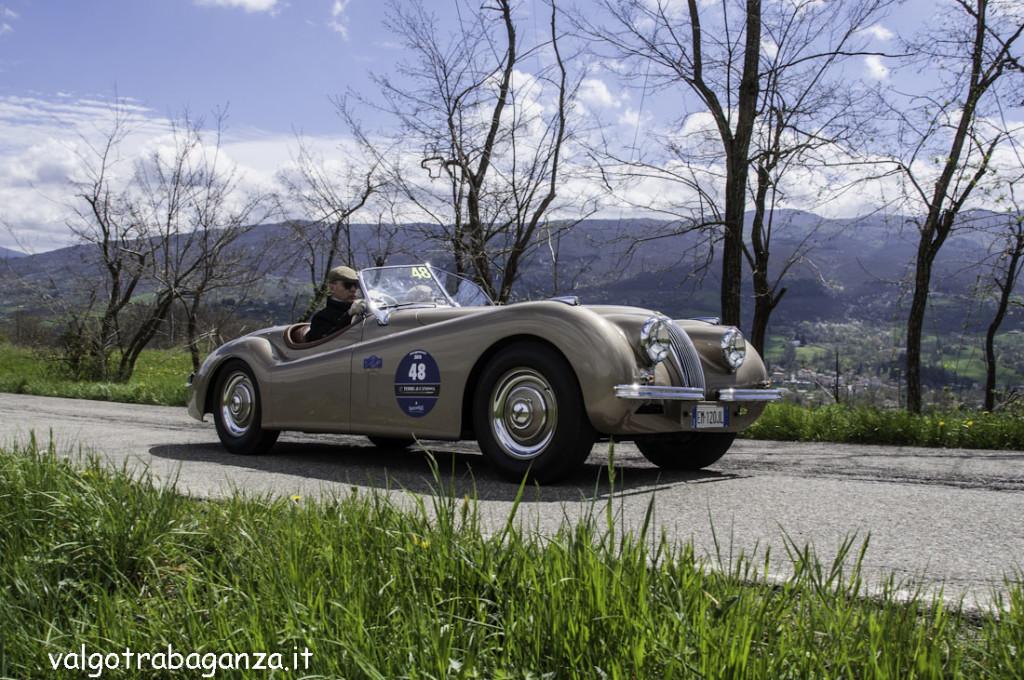 Auto Epoca (523) GP Terre Canossa