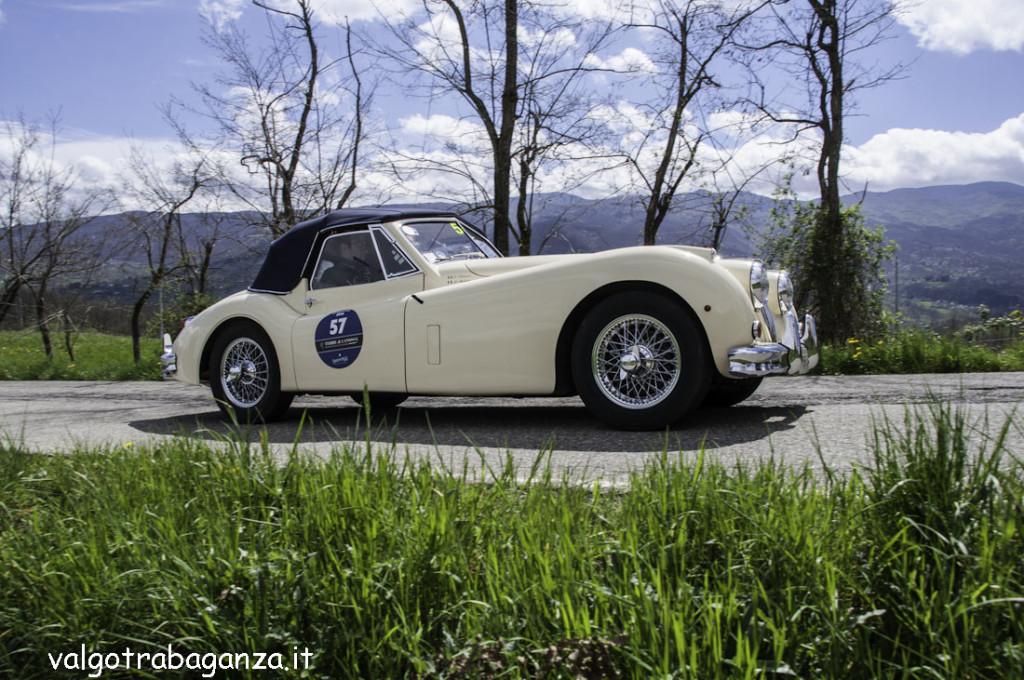 Auto Epoca (531) GP Terre Canossa