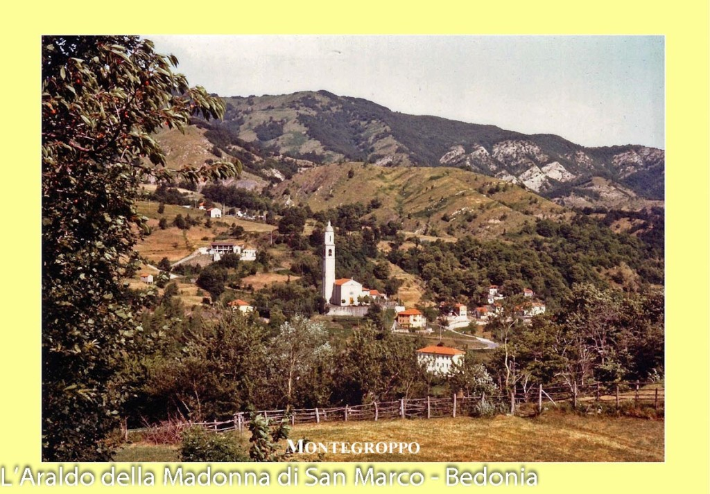 Montegroppo (100) Storia
