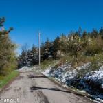 Neve 25 aprile 2016 (118) Berceto