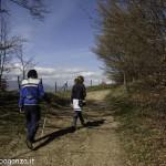 Passeggiata (135) Natura