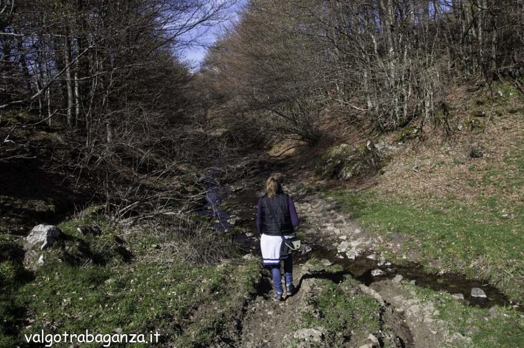 Passeggiata (176) sentiero