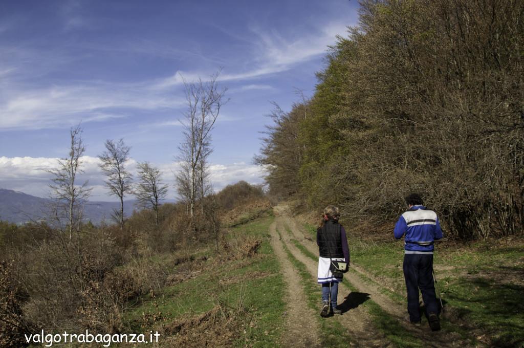 Passeggiata (180) Natura