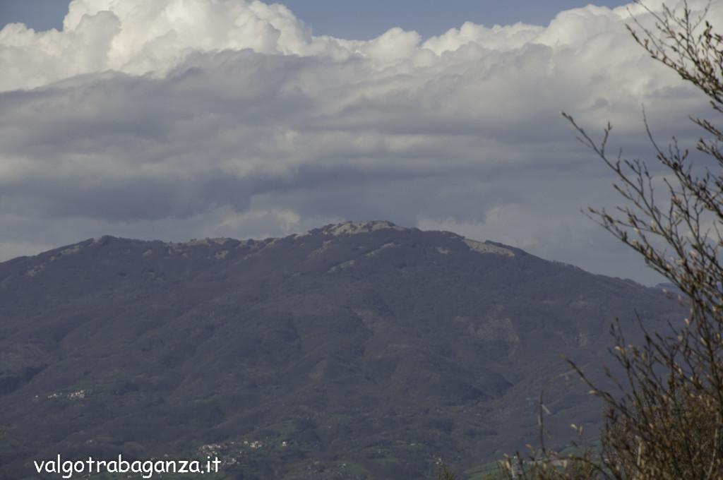 Passeggiata (203) Monte Pelpi