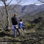 Passeggiata (247) bosco