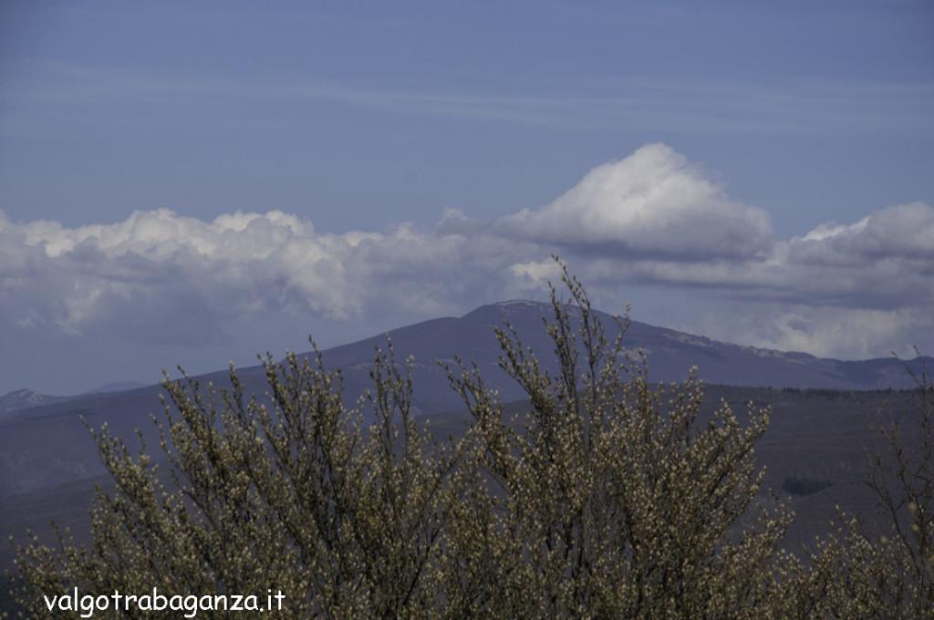 Passeggiata (273) Monte Molinatico