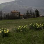 Val Baganza (131) Casino dei Pallavicino