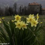 Val Baganza (135) Casino dei Pallavicino