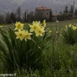 Val Baganza (136) Casino dei Pallavicino