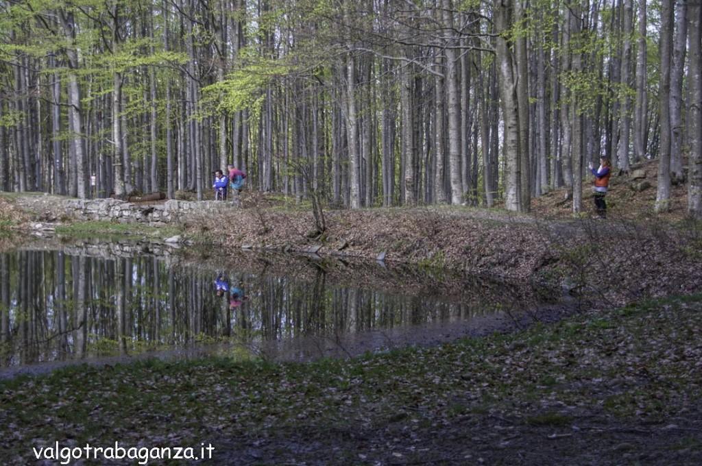 Lago Martino (100) Monte Molinatico