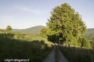 Quadrifoglio Ultratrail (118) Borgo Val di Taro