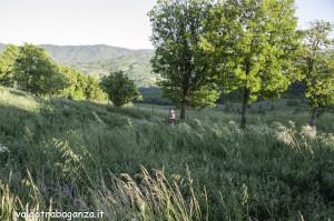 Quadrifoglio Ultratrail (165) Borgo Val di Taro