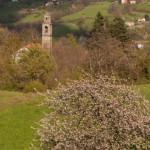 Albareto (161) Tombeto