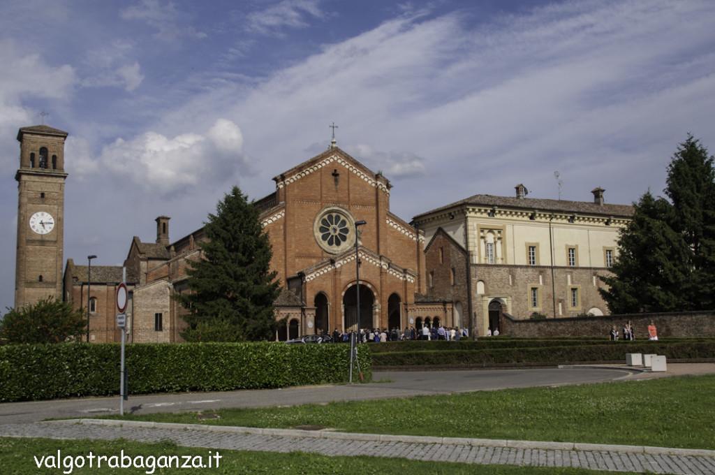 Infiorata (101) Corpus Domini Chiaravalle