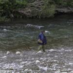 Pesca (116) Fiume Taro
