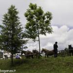 Pianazze (100) Fiera Agricola
