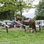 Pianazze (184) Fiera Agricola