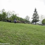 Pianazze (224) Fiera Agricola
