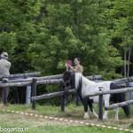 Pianazze (255) Fiera Agricola
