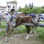 Pianazze (256) Fiera Agricola