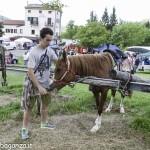 Pianazze (257) Fiera Agricola