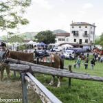 Pianazze (258) Fiera Agricola