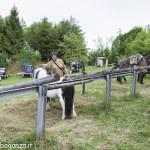 Pianazze (264) Fiera Agricola