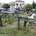 Pianazze (265) Fiera Agricola
