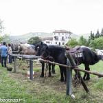 Pianazze (278) Fiera Agricola