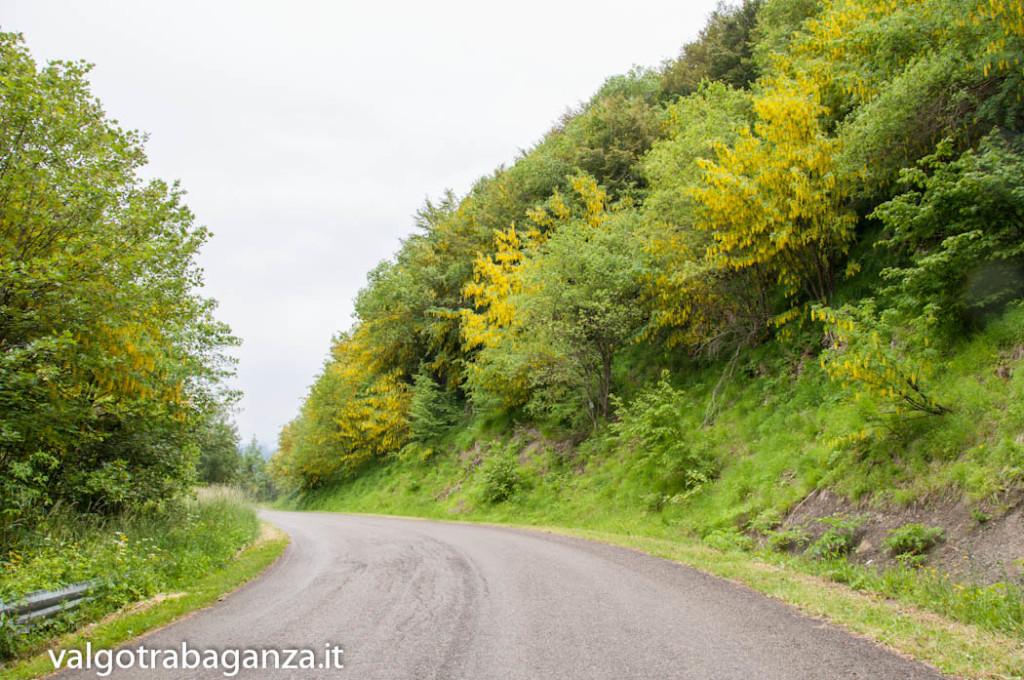 Ultra K Trail (151) Corniglio