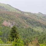 Ultra K Trail (161) Corniglio