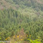 Ultra K Trail (162) Corniglio