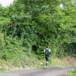 Ultra K Trail (216) Corniglio