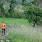 Ultra K Trail (290) Corniglio