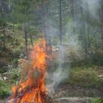 stato di grave pericolosità incendi (1)