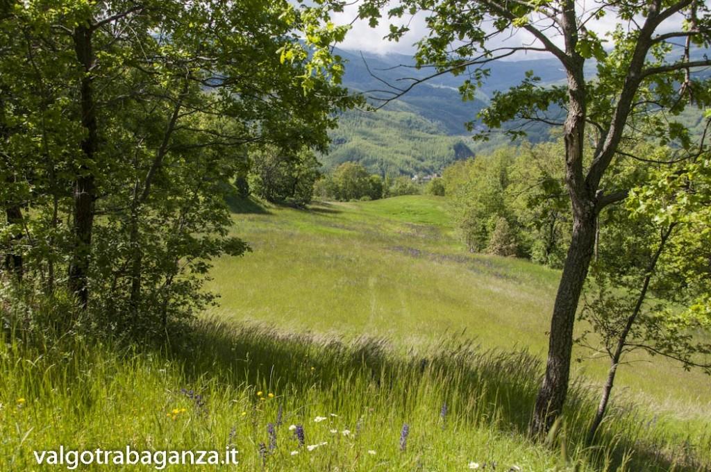 Bardi (217) Panorama