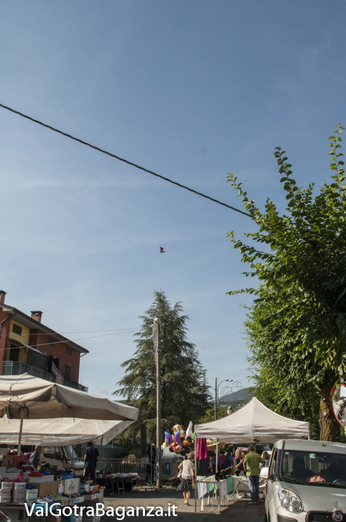 Deltamotore in volo (115) Fiera San Terenziano