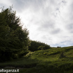 Panorama (152) Monte Pelpi