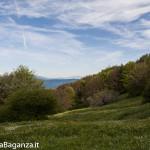 Panorama (192) Monte Pelpi