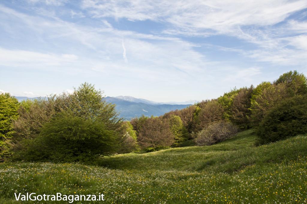 Panorama (193) Monte Pelpi