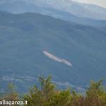 Panorama (194) Monte Pelpi