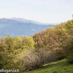 Panorama (199) Monte Pelpi