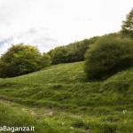 Panorama (201) Monte Pelpi