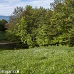 Panorama (218) Monte Pelpi